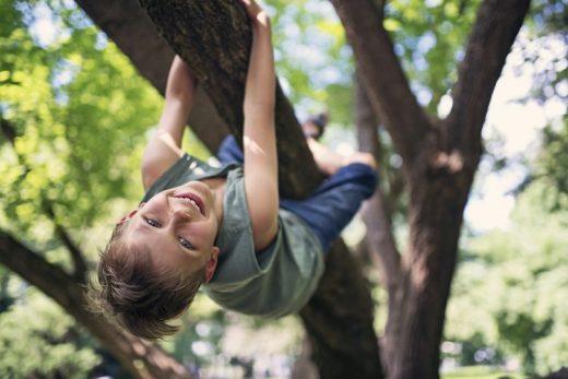 Dreng der klatrer i et træ